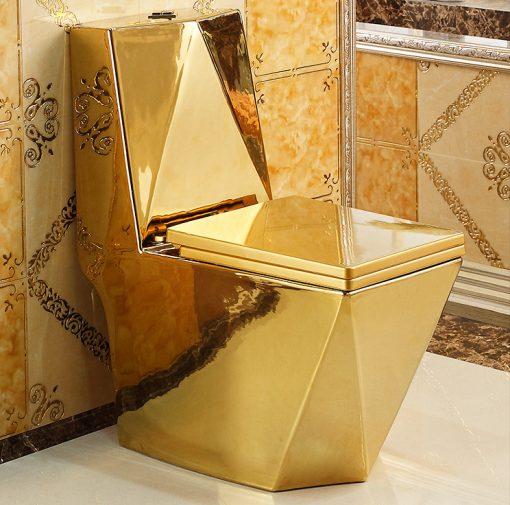 Złota toaleta, WC kompakt